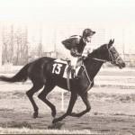 Sophie SAGOT course à cheval