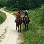 Randonnées à cheval dans la Montagne Noire