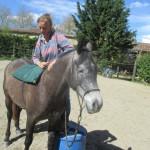 Préparation débourrage du cheval en douceur