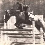Sophie SAGOT saut d'obstacles