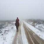 Randonnée à cheval dans la Montagne Noire en hiver